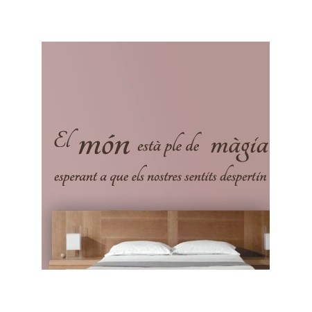 Vinilos decorativos con frase personalizada en catal n - Pared decorada con fotos ...