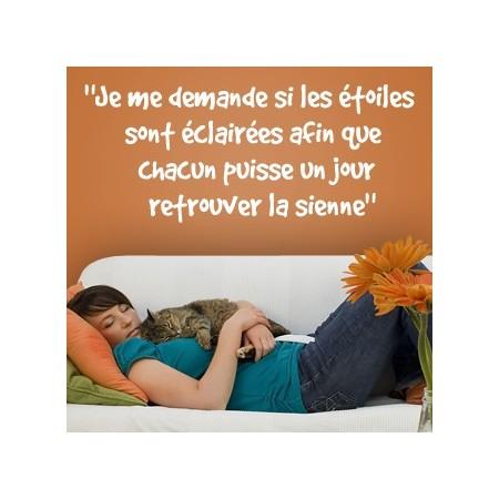 pegatinas de vinilo con Frase en francés