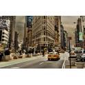 Vinilo Calle de New york