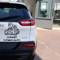 Vinilos coches Niño y mascota