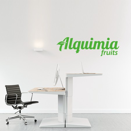 vinilos decorativos logo empresa