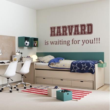 Vinilos personalizados Harvard