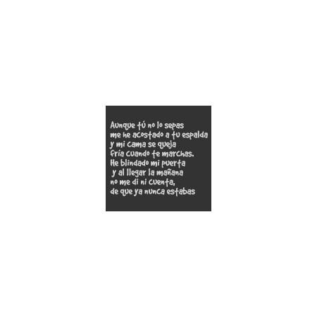 vinilos decorativos textos Cancion